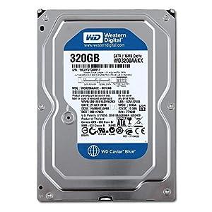 Western Digital WD3200AAKX Blue 320GB interne Festplatte (8,9 cm (3,5 Zoll), 7200rpm, SATA 6 Gb/s, 16MB Cache)