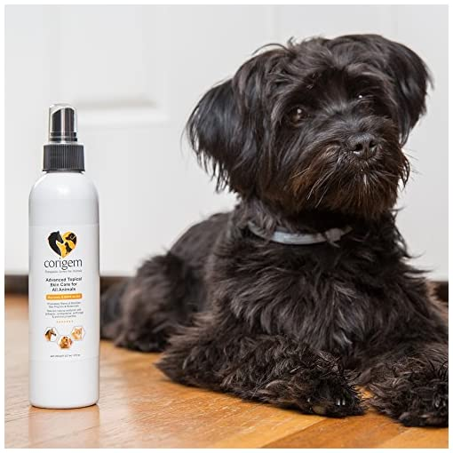 Corigem Balm - Pet Wound, Itch, and Infection Skin Care - Great Antiseptic  & Antifungal Spray for Dogs Cats and Horses