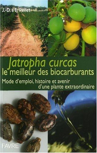 Jatropha Curcas, le carburant du futur ? : Mode d'emploi d'une plante fascinante