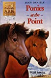 Lucy Daniels Animal Ark Summer Special 2: Ponies at the Point