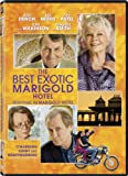 The Best Exotic Marigold Hotel / Benvenue au Marigold Hotel (Indian Palace)