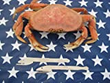 The Crabappeal Shellfish Opener Shell Cracker opens crab and lobster with ease.