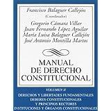Manual de Derecho Constitucional: Vol. II: Derechos y libertades fundamentales. Deberes constitucionales y principios...