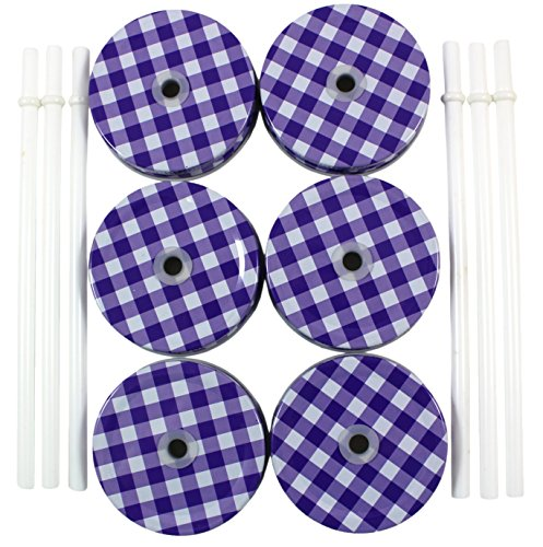 Metal Mason Jar Lids and Plastic Mason Jar Straws Set, (6 Pack), Purple & White Plaid Lids with White Solid Straws (Pretty Plastic Jars compare prices)