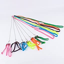 Yosoo Multicolor Adjustable Harness & Leash Anti-bite Light Soft For Parrot Birds Random color
