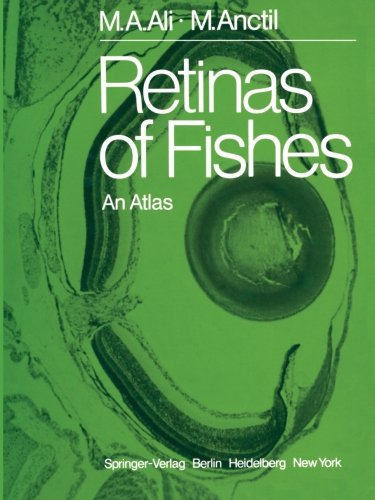 Retinas Of Fishes: An Atlas