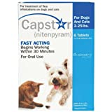 Capstar Pet Flea Medicine