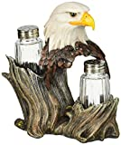 ih casa dcor DW-26335 Resin Eagle Salt and Pepper Holder