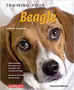 Training Your Beagle (Training Your Dog) Paperback – April 1, 2011