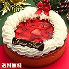 OCS クリスマスケーキ イチゴごろごろタルトケーキ