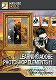 Adobe Photoshop Elements 11 [Online Code]