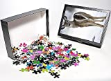Photo Jigsaw Puzzle of White-tailed Deer...