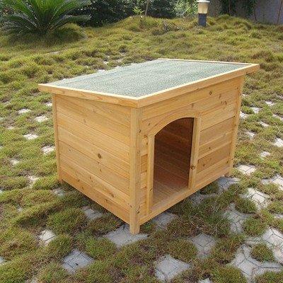 Dog House Plastic