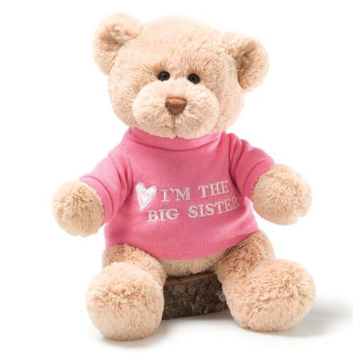 "Gund I'm The Big Sister Message 12"" Bear Plush"