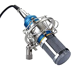 Imported Professional Condenser Microphone Mic Sound Studio Recording Dynamic Blue