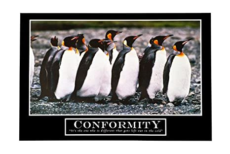 conforming to societys norms essay Society's conformity is a soldier's home and was expected to conform back into societies expectations with conformity essay they adopt the group norm.