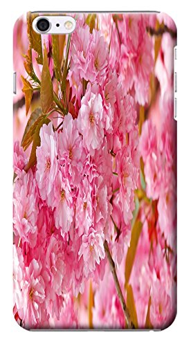 Fantastic Faye Case / Cover Satura Pink Spring Flower Cherry Blossoms Special Design Distinctive Unusual Cell Phone Cases For iPhone 6 (4.7)