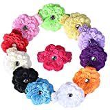 Bei wang Flower Hair Clips with Crochet Headbands for Baby Toddler Youth Girls