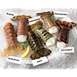 Lobster Gram CCTS2 CONTINENTAL LOBSTER TAIL SAMPLER WITH 12 LOBSTER TAILS by Lobster Gram