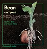 Bean and plant (Stopwatch books)