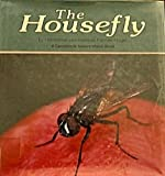 img - for The Housefly (Naturewatch) book / textbook / text book