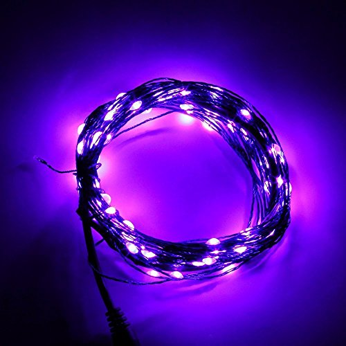 Yhg 10M 32.8Ft 100 Leds Warm White Waterproof Starry Starry Led String Lights For Outdoor Indoor Room Garden Home Christmas Party Decoration Wedding Holiday Patio Backyard Bedroom Fairy Rope Light (Purple) front-117246