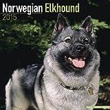 Norwegian Elkhound Calendar - Breed Specific Norwegian Elkhound Calendar - 2015 Wall calendars - Dog Calendars - Monthly Wall Calendar by Avonside