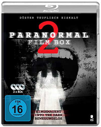 Paranormal Film Box 2 - Boxset mit 3 Horror-Hits: Into The Dark, Eingemauert, Static [Blu-ray]
