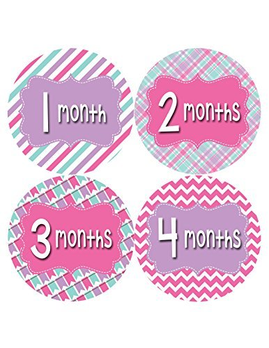 Months in Motion 409 Monthly Baby Stickers Girl Monthly Photo Milestone Month - 1