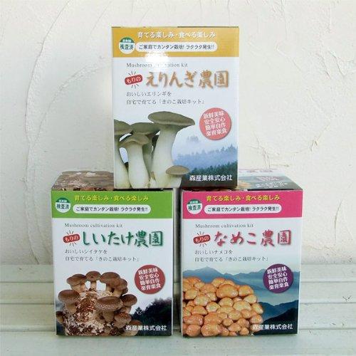 きのこ栽培3種セット(しいたけ・なめこ・エリンギ)