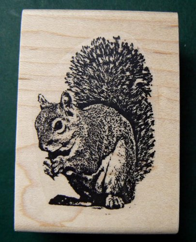 Squirrel rubber stamp wood mounted Q2