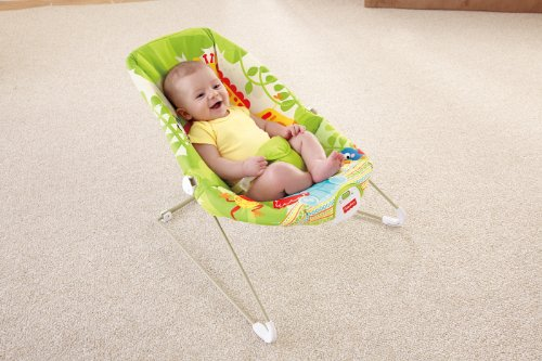 fisher price calming vibrations bouncer manual