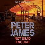 Not Dead Enough   Peter James