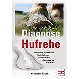 Diagnose Hufrehe - Erste Hilfe und Therapie, Risikofaktoren, Huf