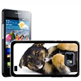 Fancy A Snuggle German Shepherd Puppy Dog On Back Design Hard Case Clip On Back Cover for Samsung Galaxy S2 i9100