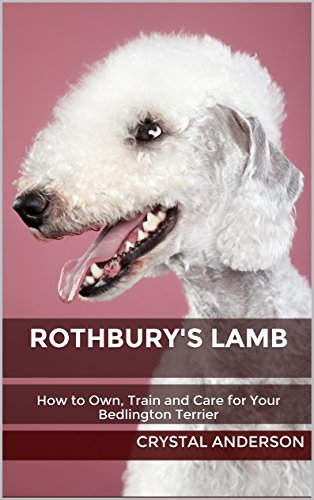 Free Kindle Book : Rothbury