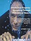 img - for Intellectual Property: Navigating Through Commercial Waters: Issues and Solutions When Negotiating Intellectual Property With Commercial Companies book / textbook / text book