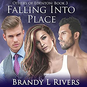 Falling Into Place Audiobook