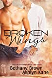 Broken Wings (Lost Boys and Love Letters)