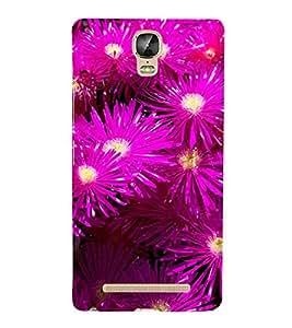Beautiful Flowers 3D Hard Polycarbonate Designer Back Case Cover for Gionee Marathon M5 Plus
