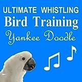 Ultimate Whistling Bird Training - Yankee Doodle