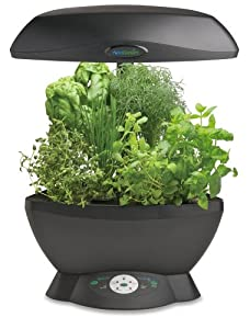 AeroGarden 901011-1200 Space-Saver 6 with Gourmet Herb Seed Kit, Black
