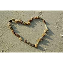 Heart from Seashells on Sand Beach - Peel and Stick Wall Decal by Wallmonkeys