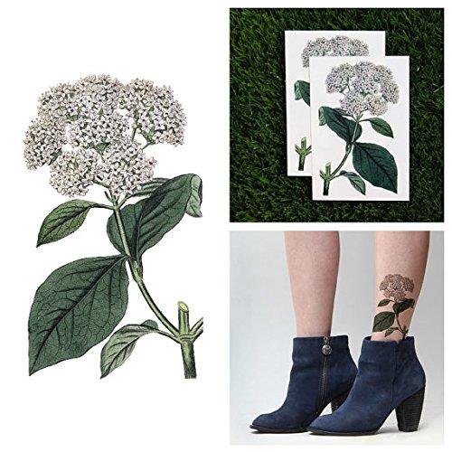 tattify-viburnum-flower-temporary-tattoo-shrub-off-set-of-2