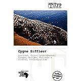 Cygne Siffleur