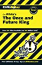 The Once and Future King (Cliffs Notes)