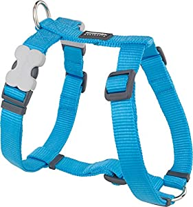 Red Dingo Plain Dog Harness, Medium, 20 mm, Turquoise
