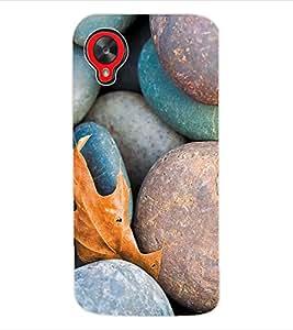 ColourCraft Rocks Back Case Cover for LG GOOGLE NEXUS 5