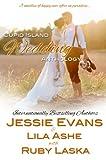 Cupid Island Wedding Anthology