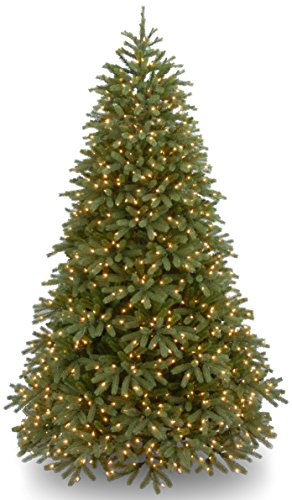 National Tree 'Feel-Real' Jersey Frasier Fir Medium Hinged Tree With 1000 Low Voltage Dual Led Lights And Plastic Caps, 7-1/2-Feet